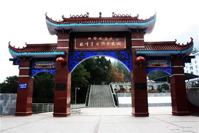 鹤峰满山红 (2)